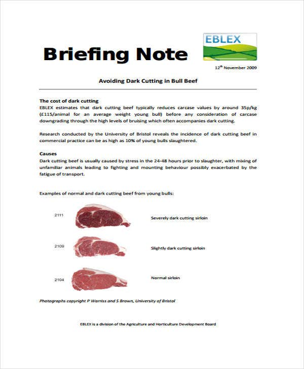example of a briefing notes
