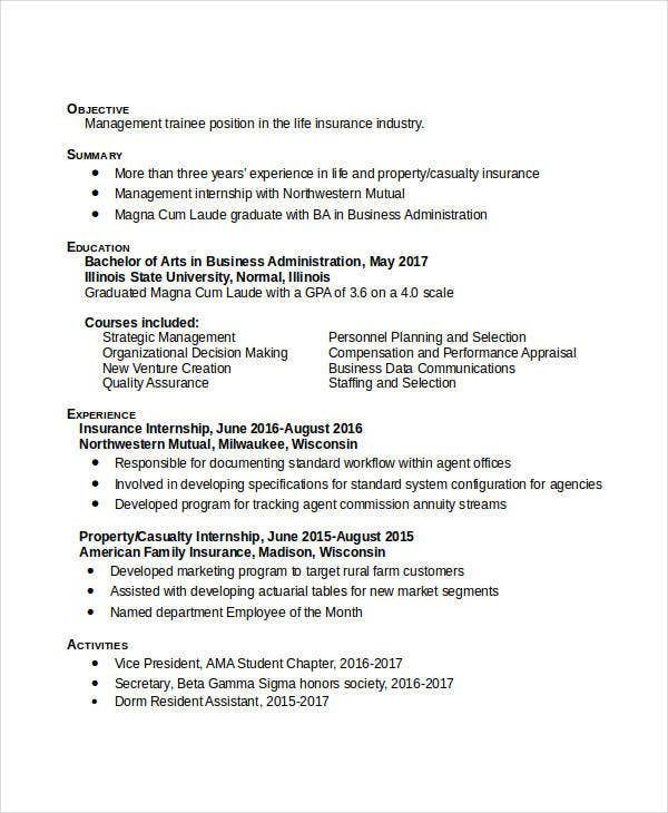 example of professional business resume