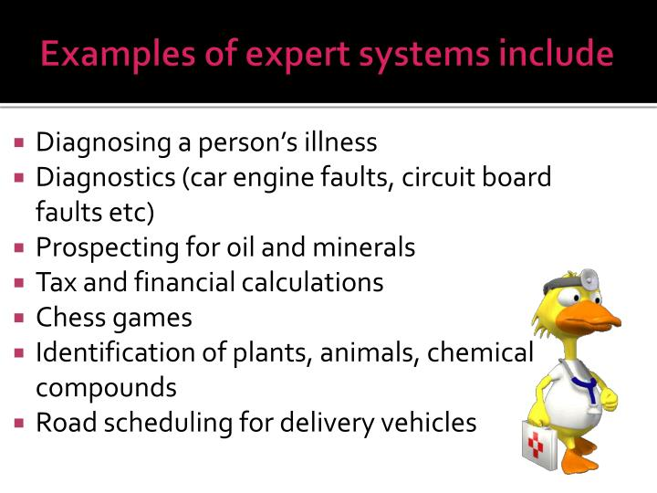 what is expert system with example