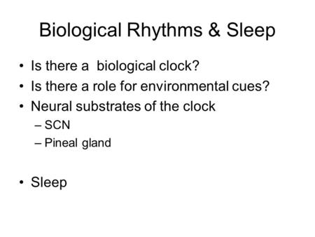 an example of a biological rhythm is