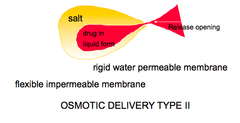 an example of an electrolyte is quizlet