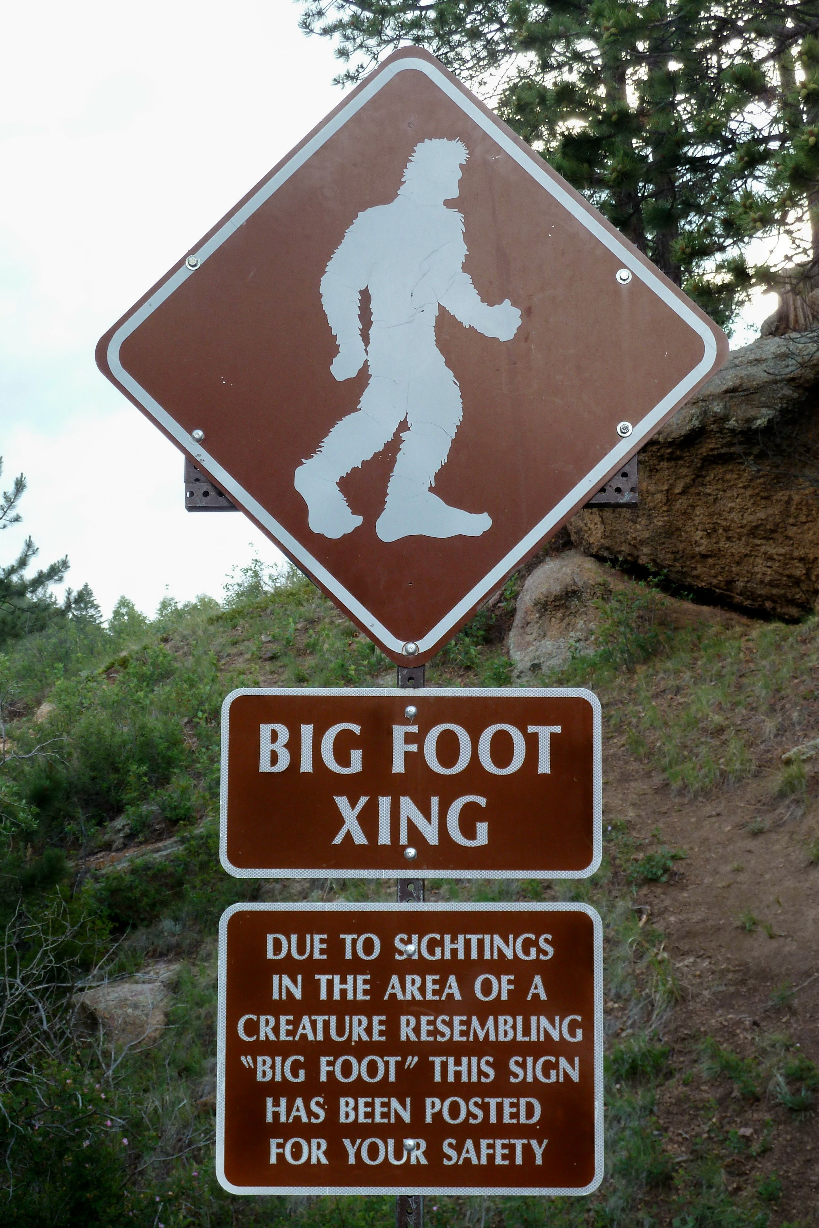 is big foot an example of paranormal
