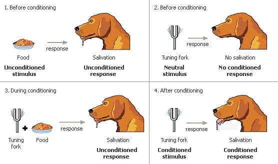 what is an example of classical conditioning
